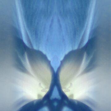 Celestial Cogency by Crisgo