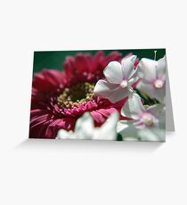 Colors of Destiny. Greeting Card