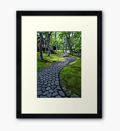 Path Through Moss Framed Print