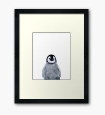 Little Penguin Framed Print