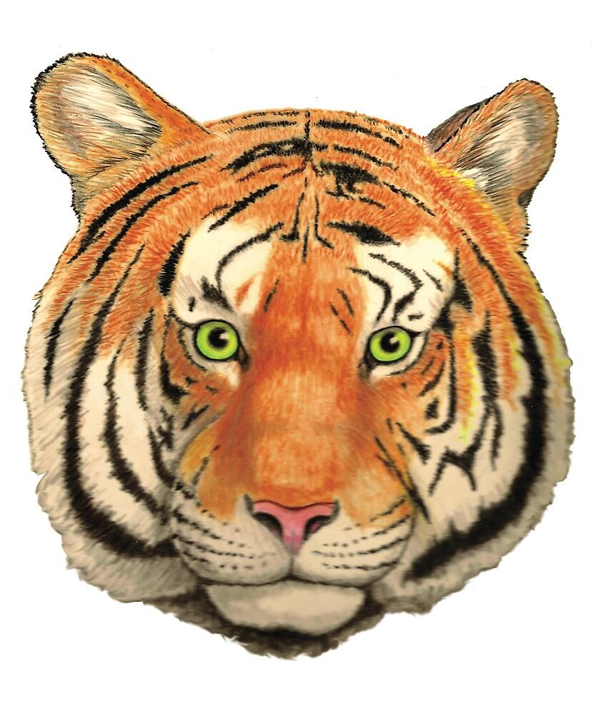 Tiger Head by larryr33