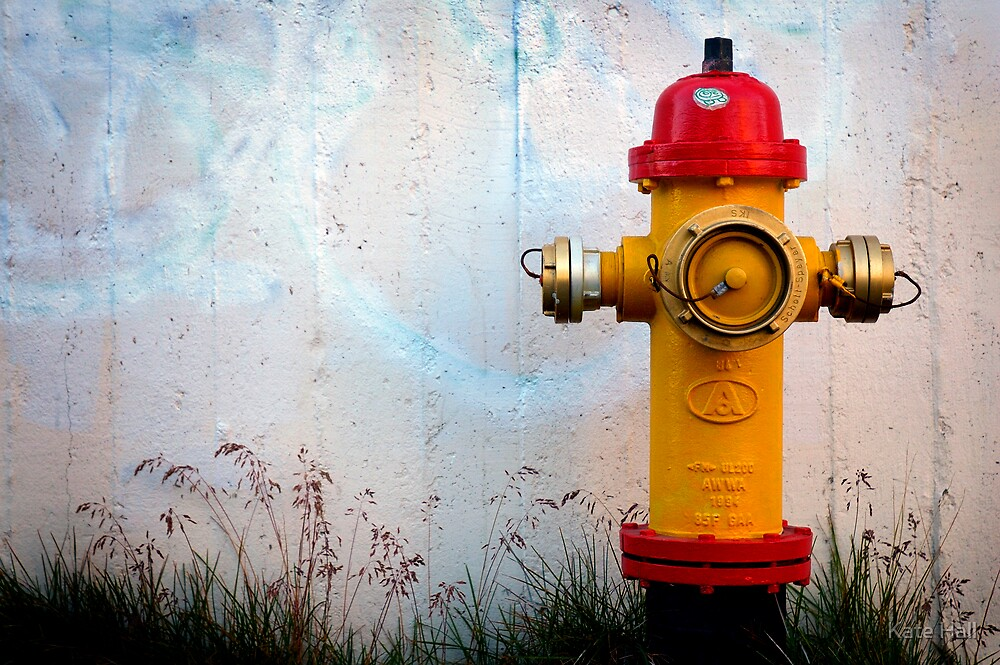 Fire Hydrant by Kate Hall