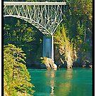 DECEPTION PASS BRIDGE by YELLOWJACKET
