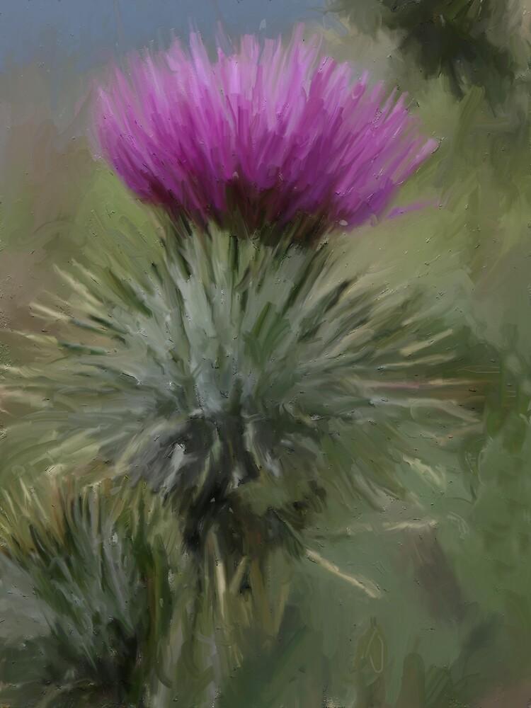 Grand tour de l'Écosse by Alan Findlater