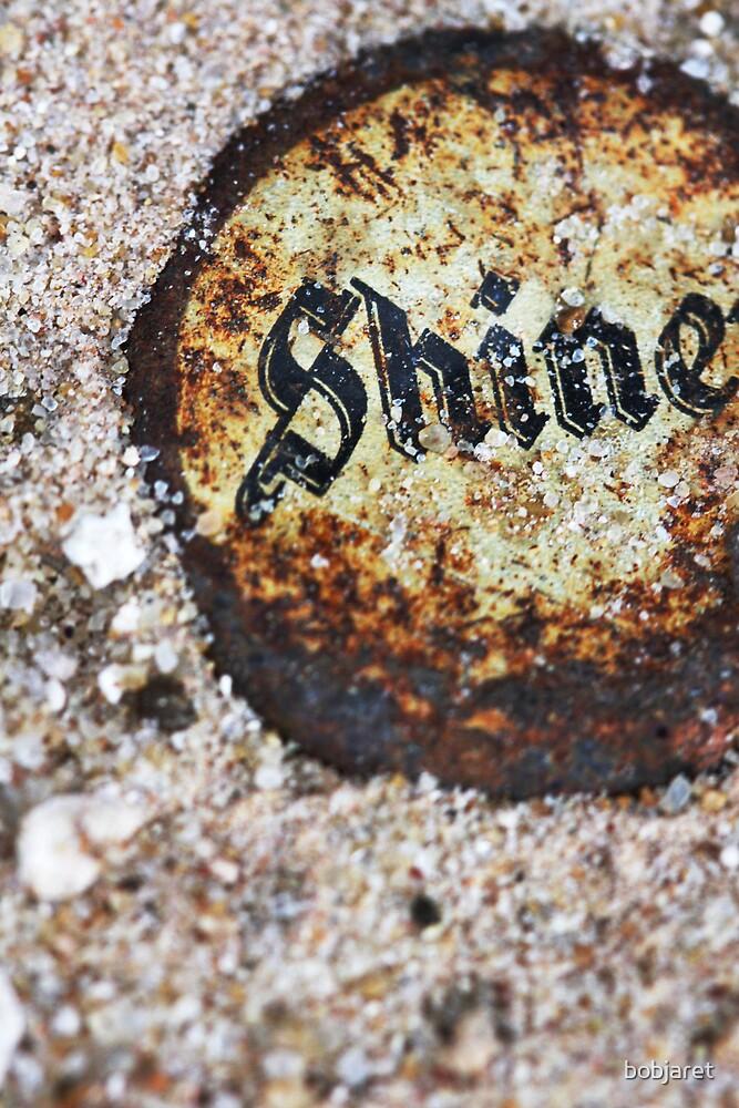 shine by bobjaret