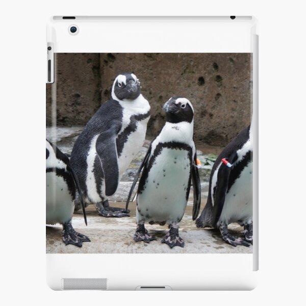 Flightless Foursome iPad Snap Case