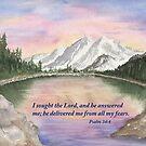 God's Peace- Psalm 34:4 by Diane Hall