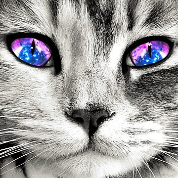 Galaxy Cat Eyes by julieerindesign