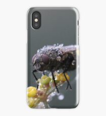 Wet Wet Wet iPhone Case/Skin