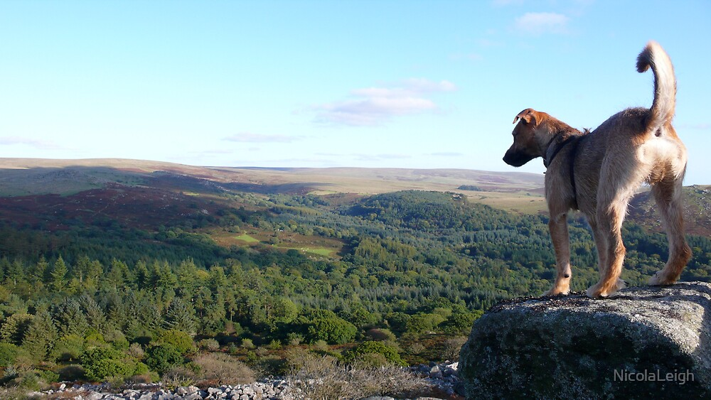 Oswald on the Tor by NicolaLeigh