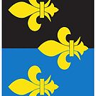 Monmouthshire Flag Phone Cases by mpodger