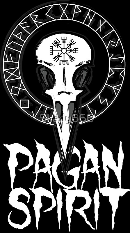 Pagan Spirit Raven Skull With Rune Circle And Odins Protection
