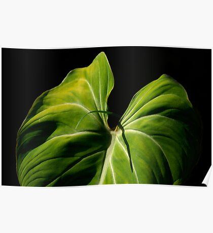 On Friendship:  Liannes Leaf... Kauai Sensual Series Poster