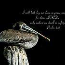 Psalm 4:8 by Jonicool