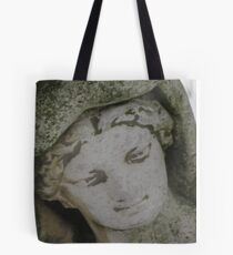 Wadsworth in winter Tote Bag