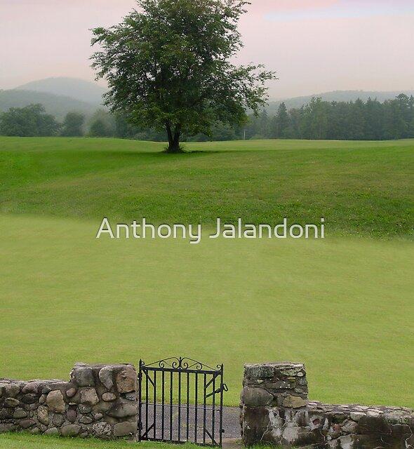 Gate to Solitude by Anthony Jalandoni