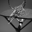 all net by jjcphotography