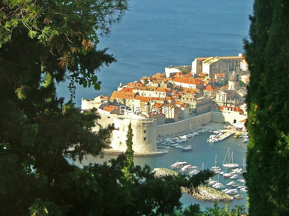 Framed Dubrovnik by Béla Török