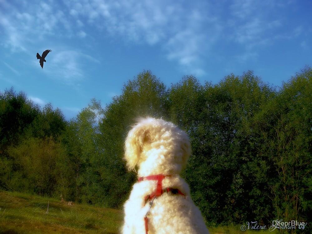 I Wish I Could Fly (v1) by DeeprBlue