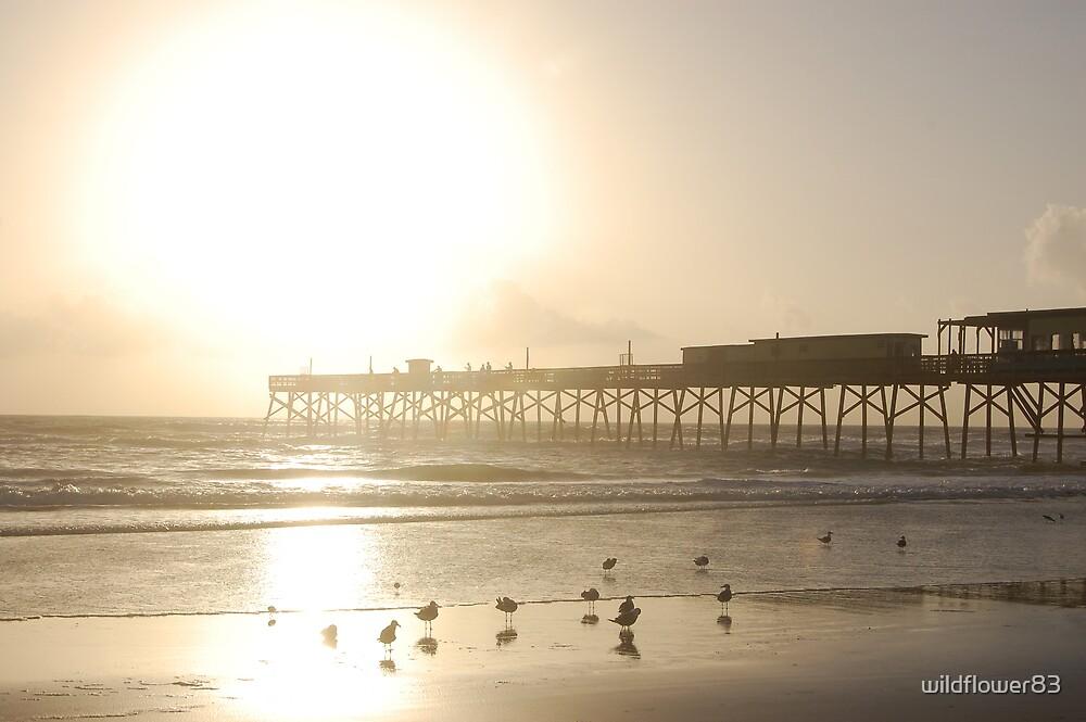 Sunrise at the Atlantic Ocean by wildflower83
