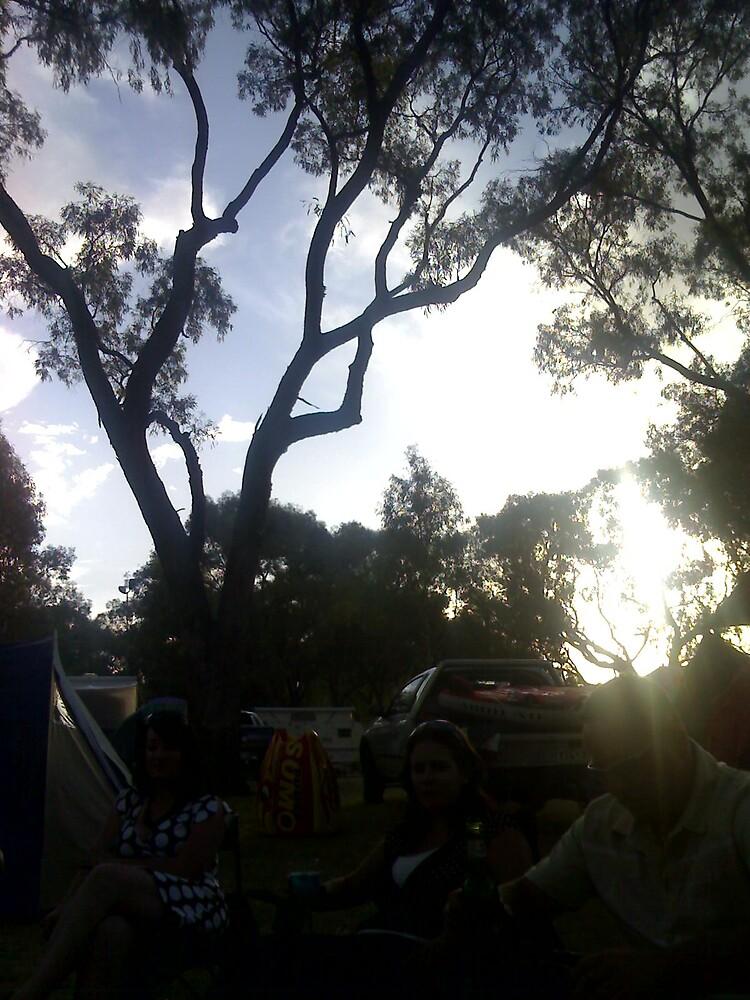 Beautiful sun through the trees by KYL1E