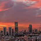 Skyline of Tel-Aviv at Sunset by Yair Karelic