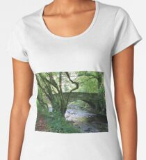 Island Bridge Women's Premium T-Shirt