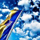 The flag by Kurt  Tutschek