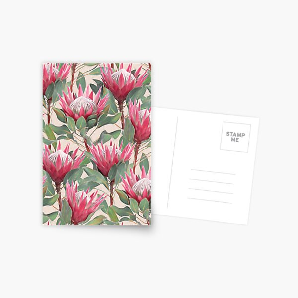 Painted King Proteas on Cream  Postcard