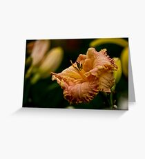 """""""Inherited Wealth"""" Daylily Greeting Card"""