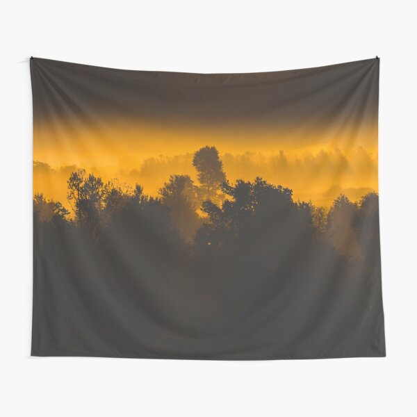 Sunrise behind foggy trees Tapestry