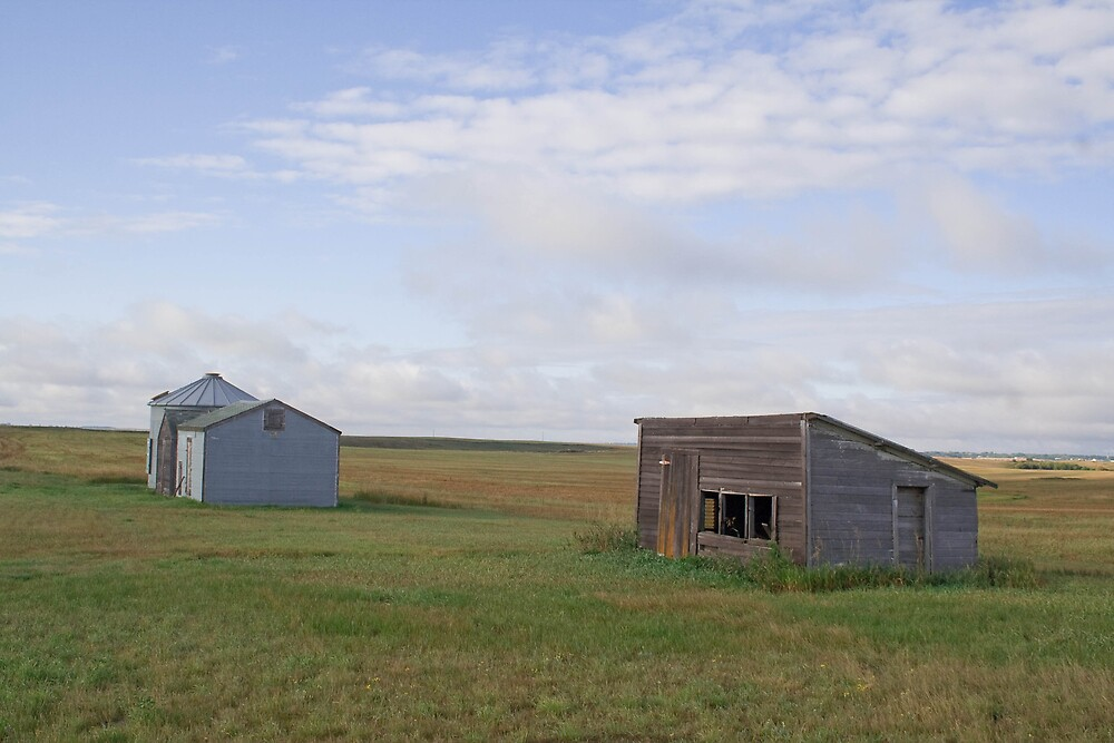 Chicken Coop and Grainery by DakotaDawn