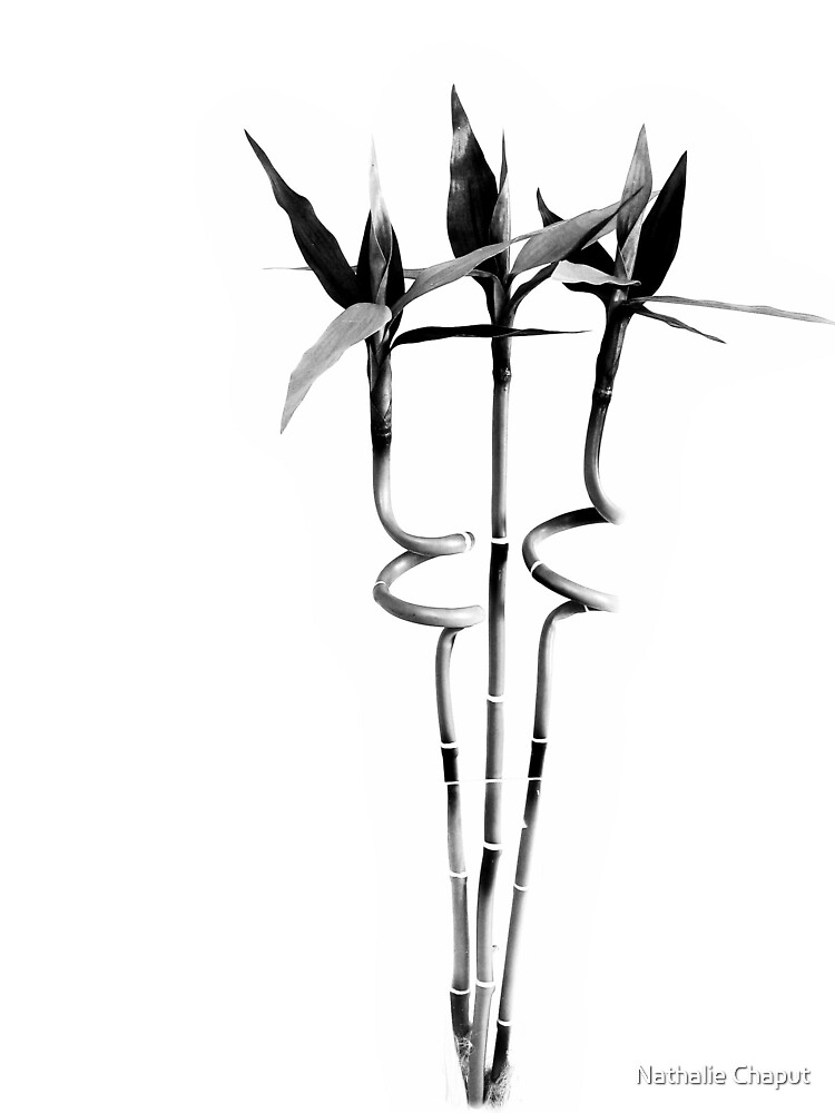 Negative Space by Nathalie Chaput