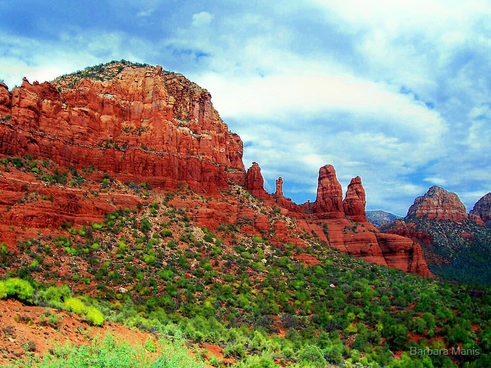 Red Rock by Barbara Manis