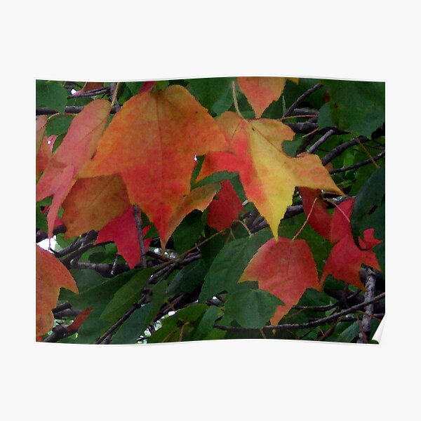 Soon Autumn Poster