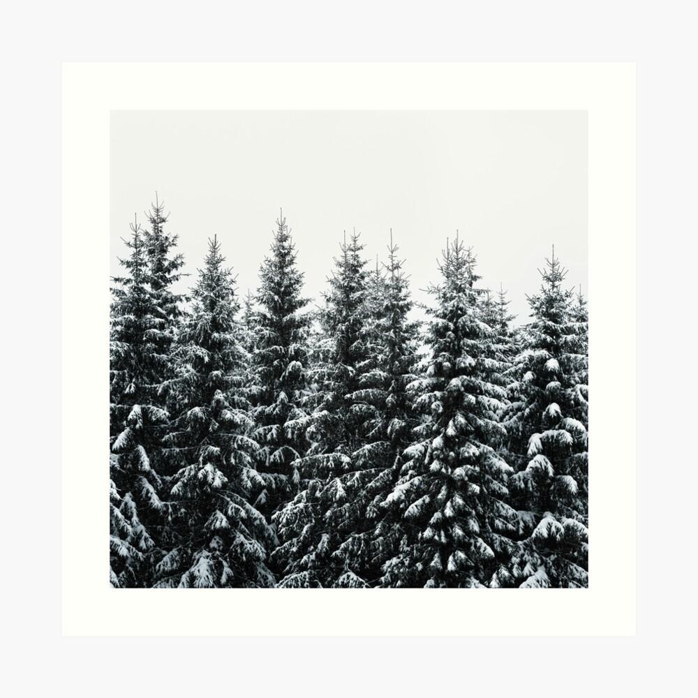 The White Bunch Art Print