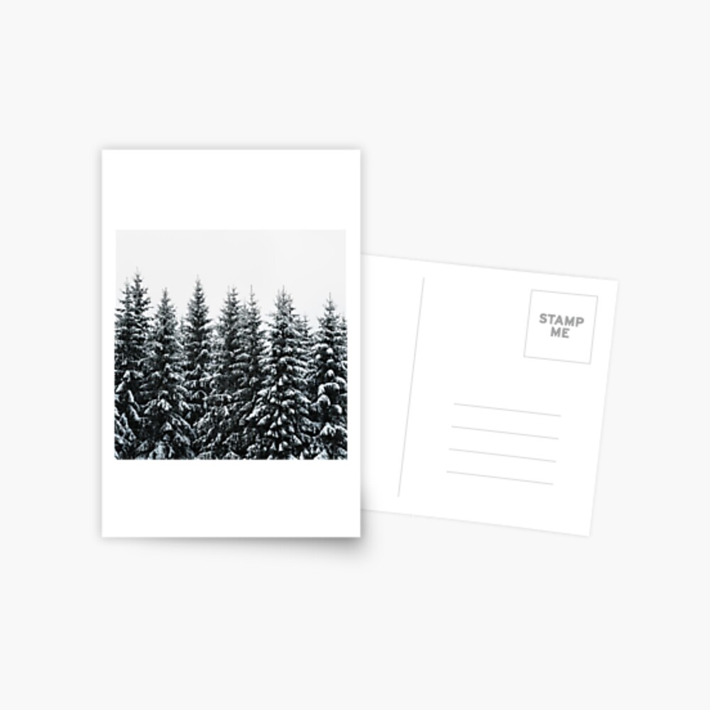 The White Bunch Postcard