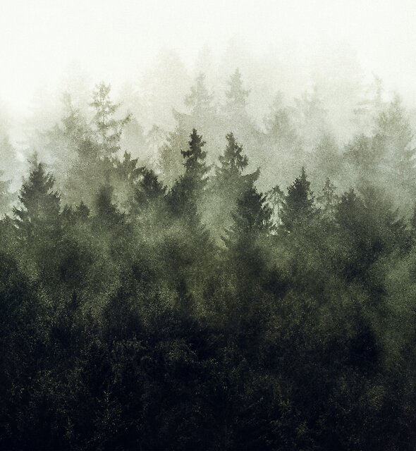 The Heart Of My Heart // Green Mountain Edit by Tordis Kayma
