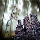 Faces Of The Woods by Igor Zenin