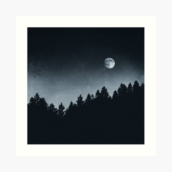 Under Moonlight Art Print