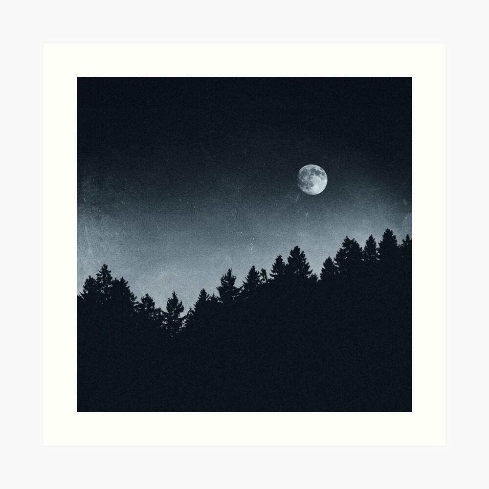 Under Moonlight Art Print
