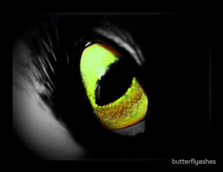 Cat Eye by butterflyashes