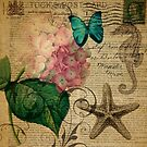 vintage starfish butterfly hydrangea floral botanical art  by lfang77