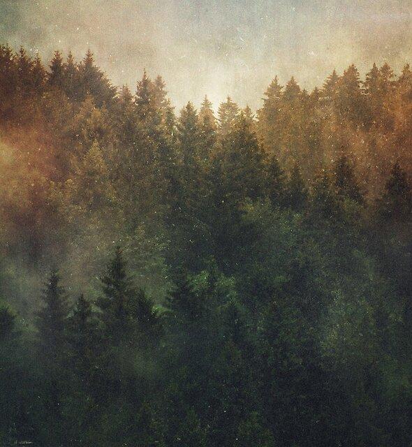 Asleep by Tordis Kayma