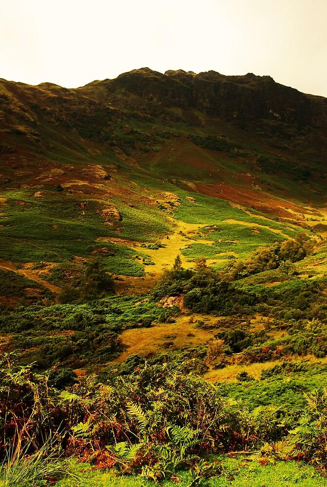 green green grass of home  by Hasriel