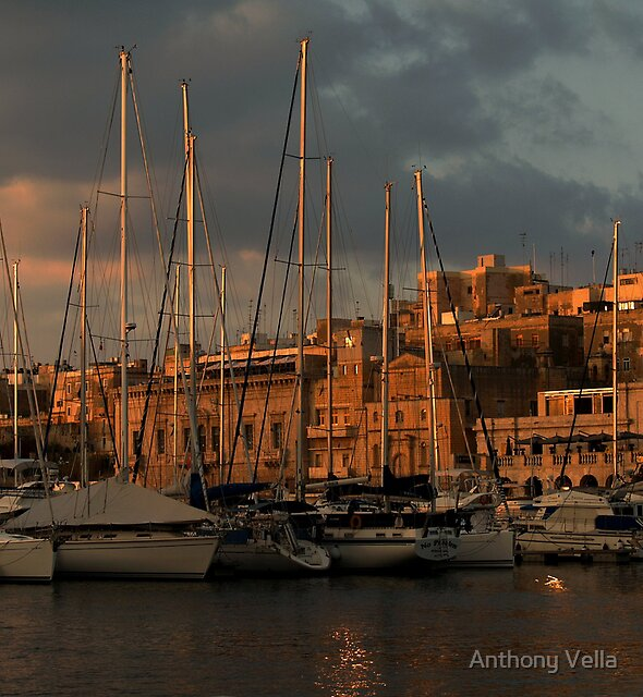 The Marina at Sundown by Anthony Vella