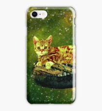 Cat on a Steak iPhone Case/Skin