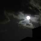 Sky at Night by Sandra Willis