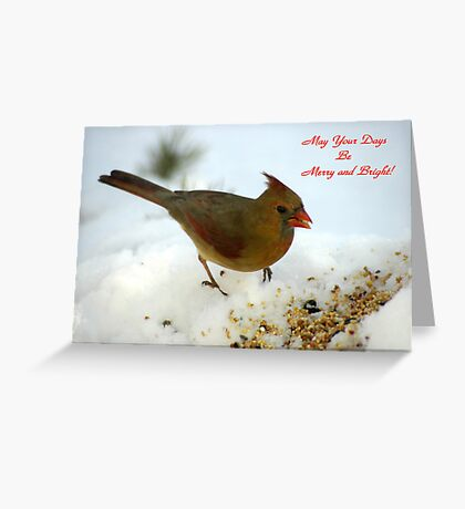 May your Days be Merry and Bright! Greeting Card