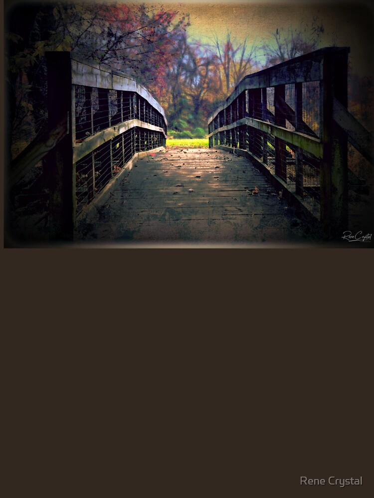 A Bridge to Autumn by imagesbycrystal
